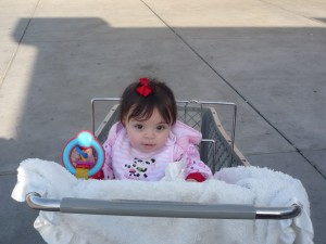 bailee-in-the-cart-4
